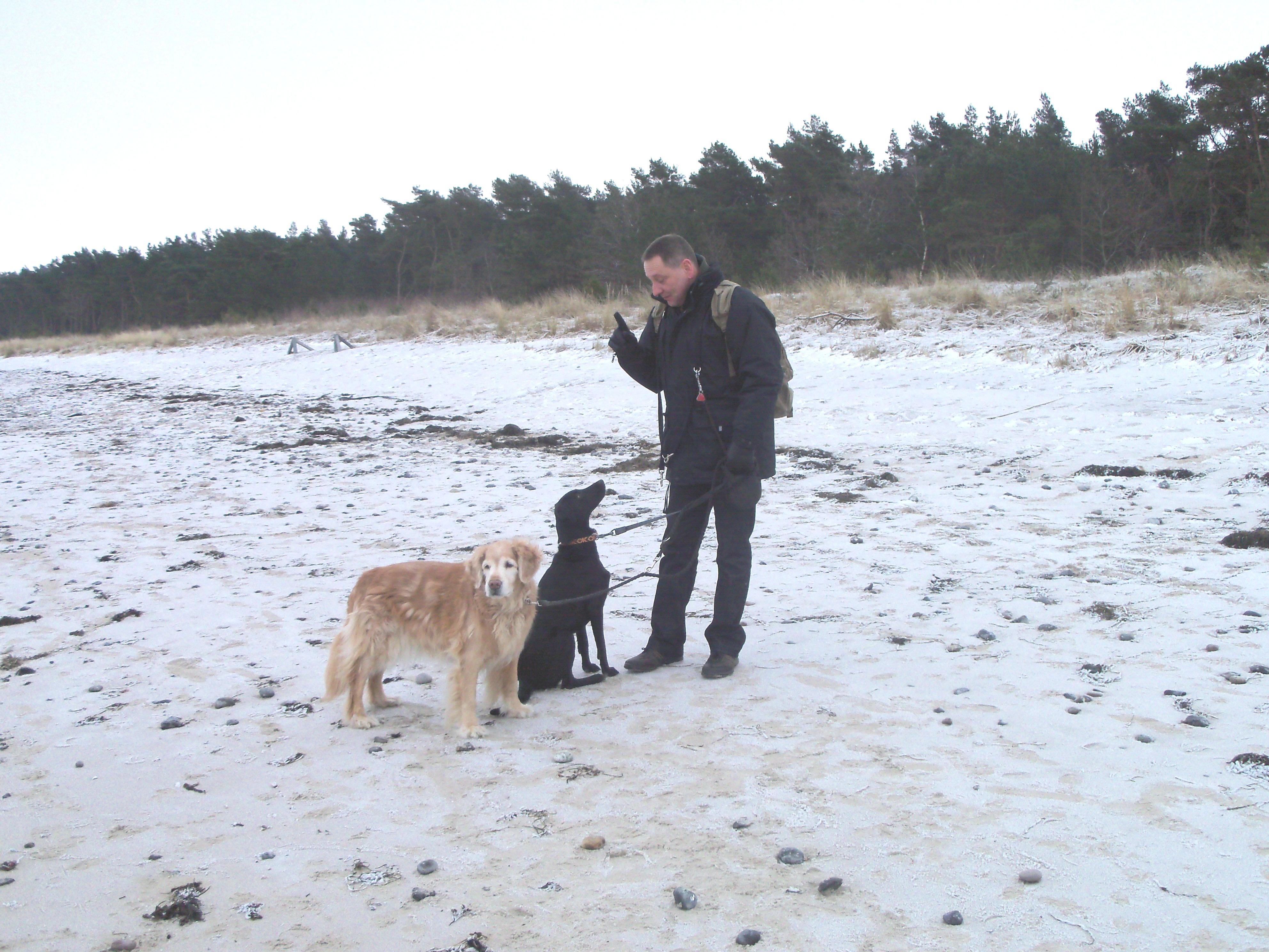 Basra und Kira mit Herrchen am Strand